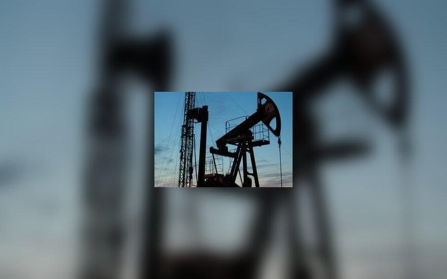 OPEC gali dar kartą mažinti naftos gavybą ir tiekimą