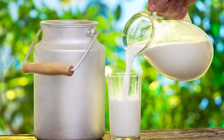 Kodėl reikėtų gerti nepasterizuotą pieną