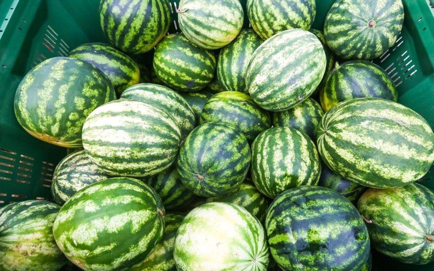 Apiplėštas prekybos arbūzais kioskas