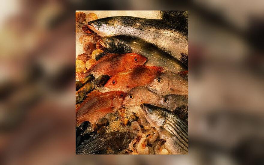 Žuvis, žuvys