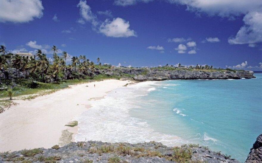Barbadosas, Karibai