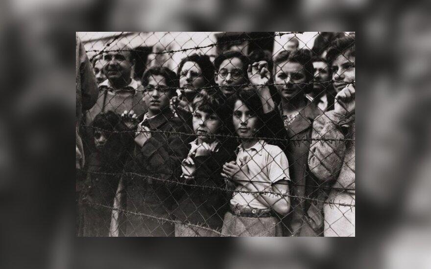 V.Mitė. Žydų žudynės Lietuvoje: kiaulidės ir Holokaustas