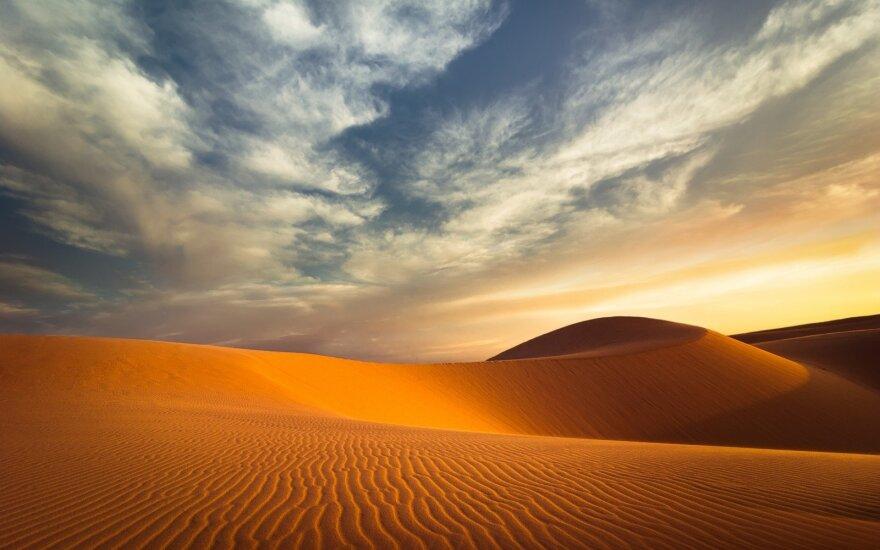 Nigerio dykumoje rasti 44 mirę migrantai