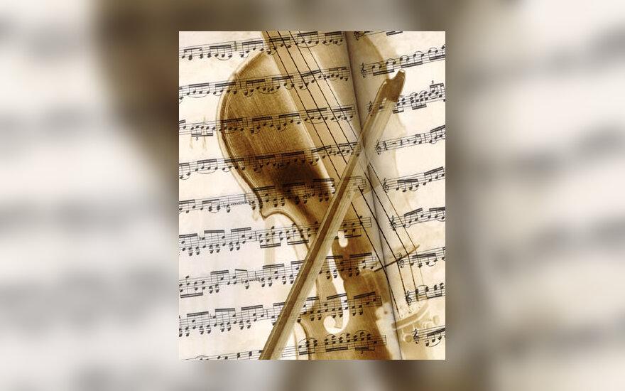 muzika, smuikas, groti, koncertas