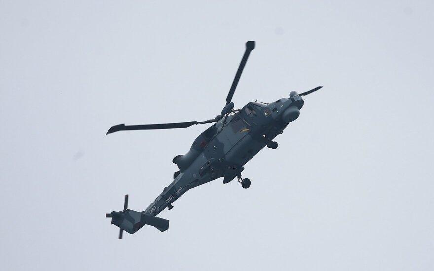 Sraigtasparnis Wildcat