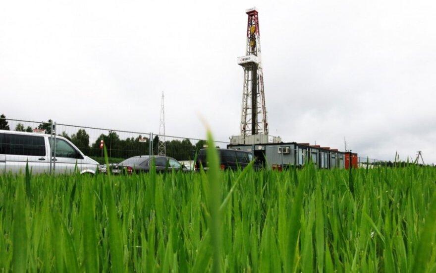 Skalūnų dujų paieška