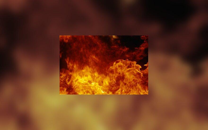 Sprogimas, ugnis, liepsna