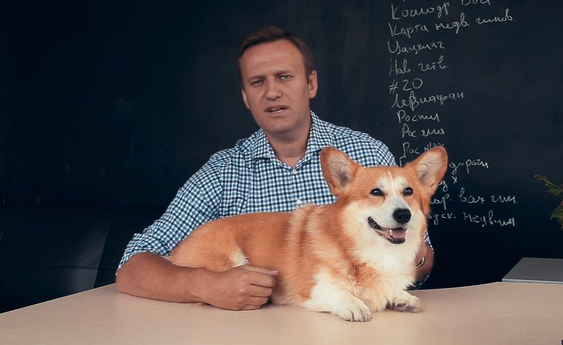 Навальный принял решение баллотироваться впрезидентыРФ в 2018-ом году