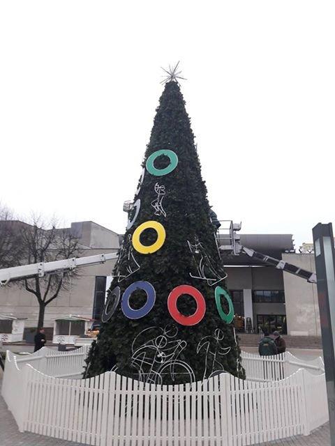 Alytaus Kalėdų eglė