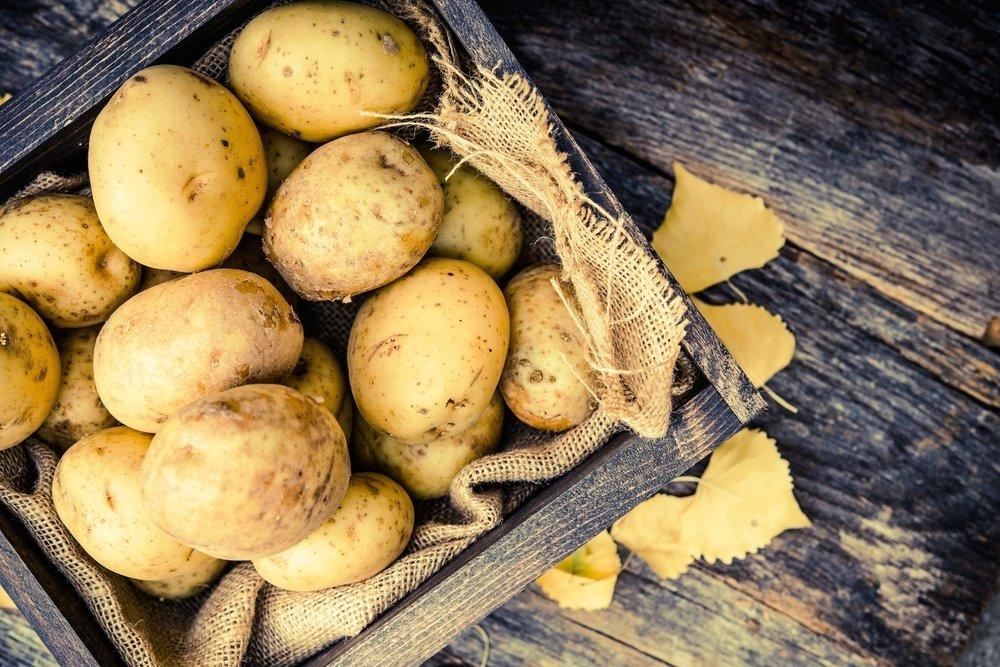5 sandėliavimo klaidos, galinčios sugadinti bulvių atsargas - DELFI Gyvenimas