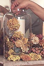 Sausos gėlės butelyje