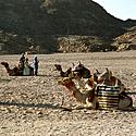 Egiptas_78