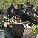 Ugandos žvejai