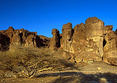 Izraelis, Karaliaus Saliamono kolonos