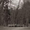 Vaikas ir medžiai