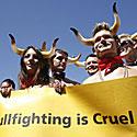 Protestas prieš bėgimą su buliais