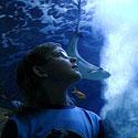 Pažinti povandeninį pasaulį galima ir taip