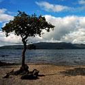 Škotija