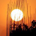 Saulėlydis