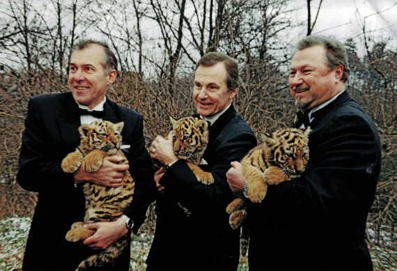 """""""Trys tigrai"""" – Tigro metais Kauno zoologijos sode gimusių trijų tigriukų """"vardatėviai"""""""