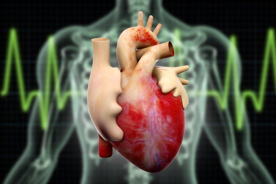 hipertenzija, kodėl skauda širdį