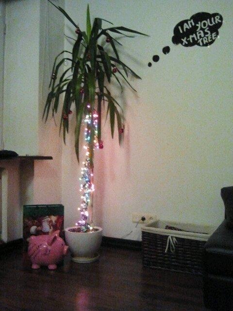 Kalėdinė juka Monikos Linkytės namuose