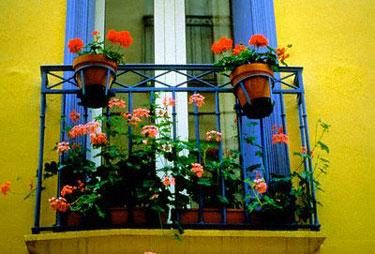 Gėlės balkone