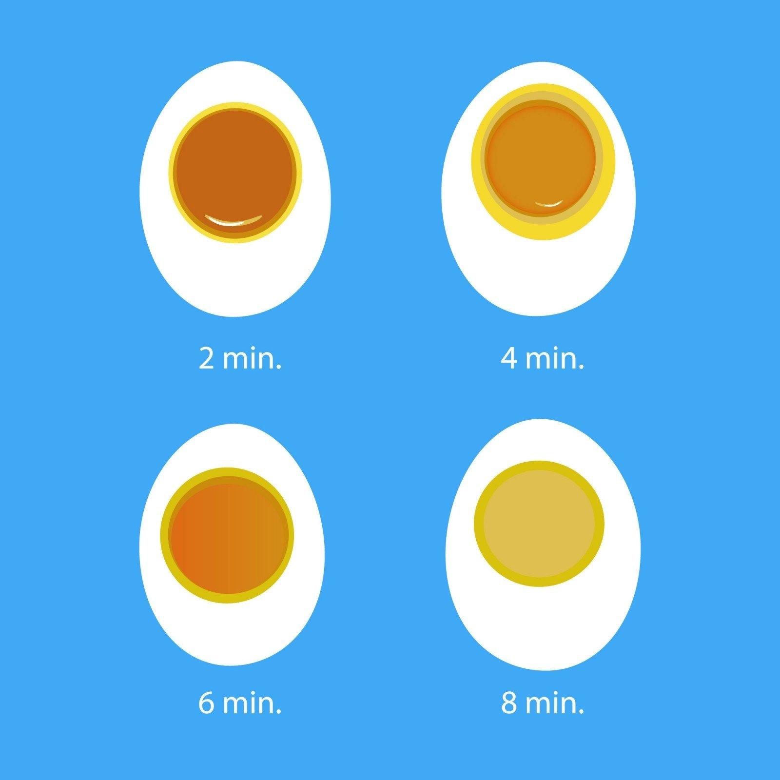 erekcijos metu kiaušiniai kabo)