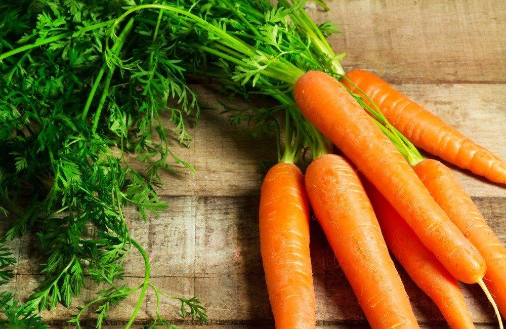 morkų ir varpos augimas padėk mane ant savo varpos