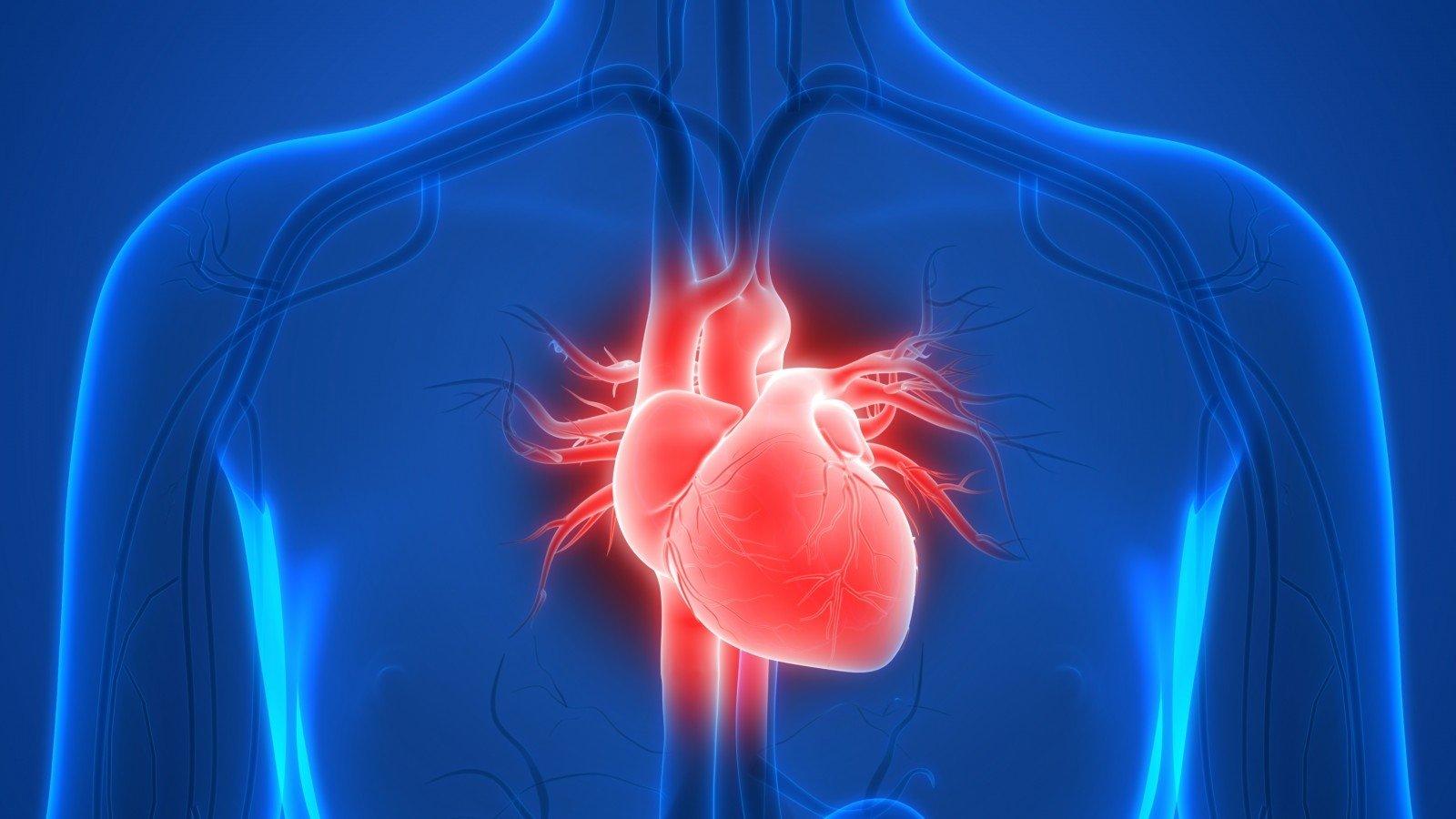 100 ligoninių ir sveikatos sistemų su puikiomis širdies programomis hipertenzija nuo miomų